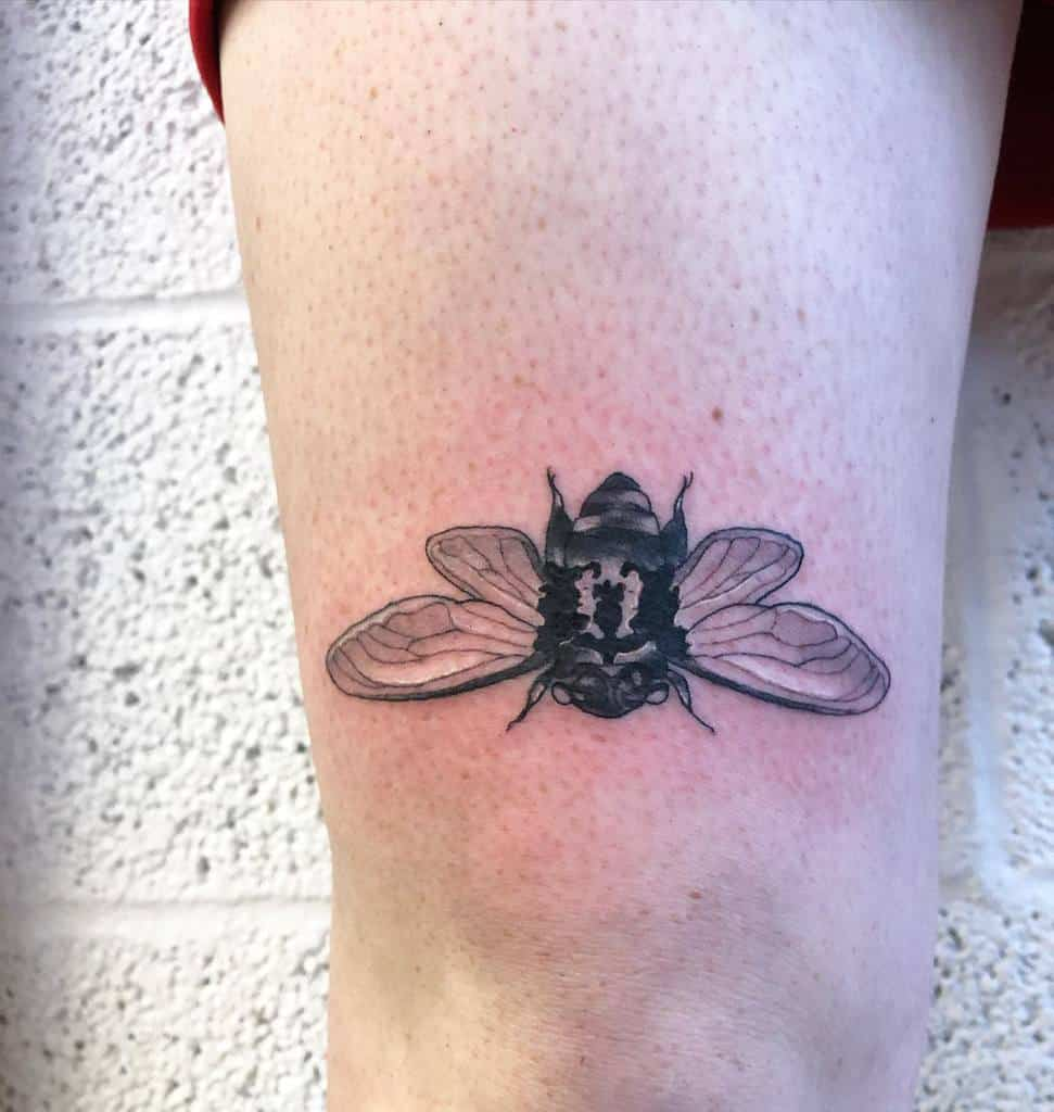 thigh Cicada Tattoos sun.in.my.mouth