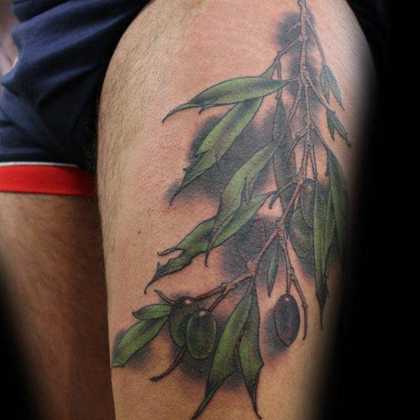 Thigh Olive Branch Tattoo For Males