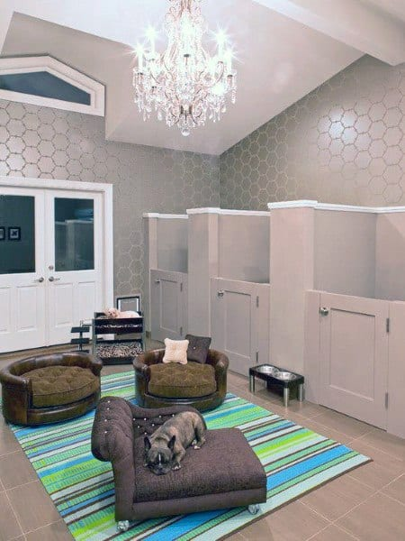 Three Dog Room Design Ideas
