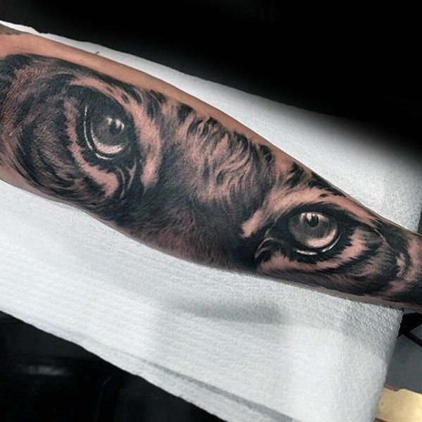 Tiger Eyes Male Tattoo Designs