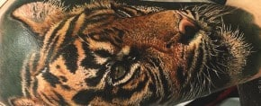 Top 101 Tiger Tattoo Ideas – [2020 Inspiration Guide]