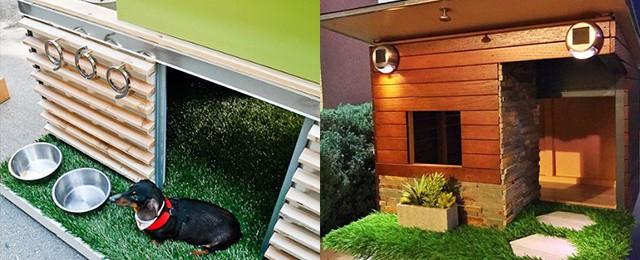 Top 50 Best Cool Dog Houses – Pads For Man's Best Friend