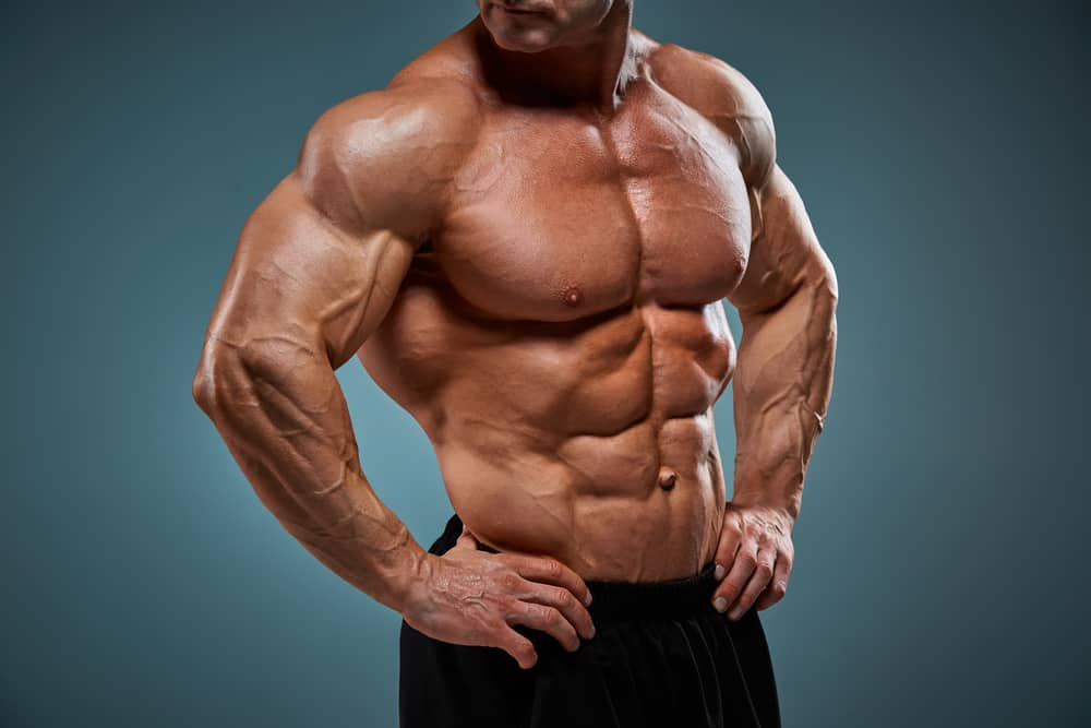 attractive male body builder showing torso on gray background