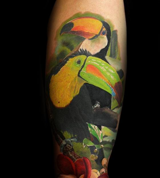 Toucan Tattoos For Gentlemen