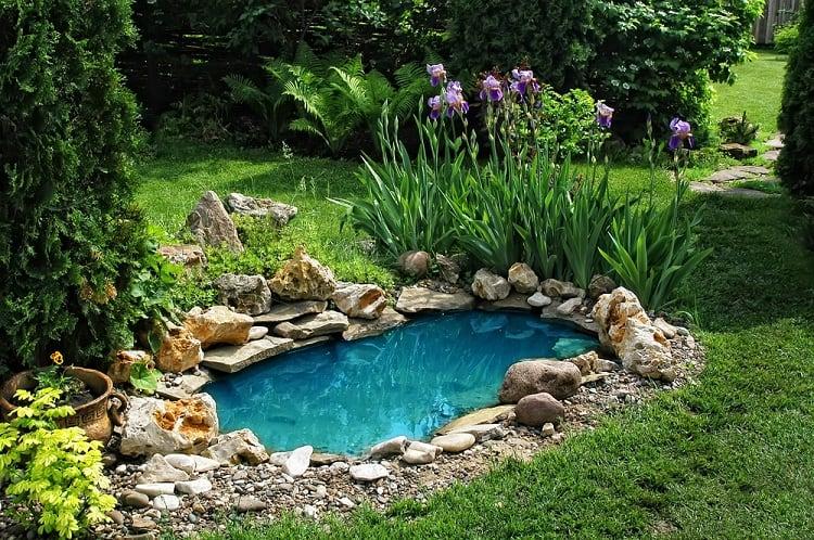 Traditional Backyard Small Shallow Pond