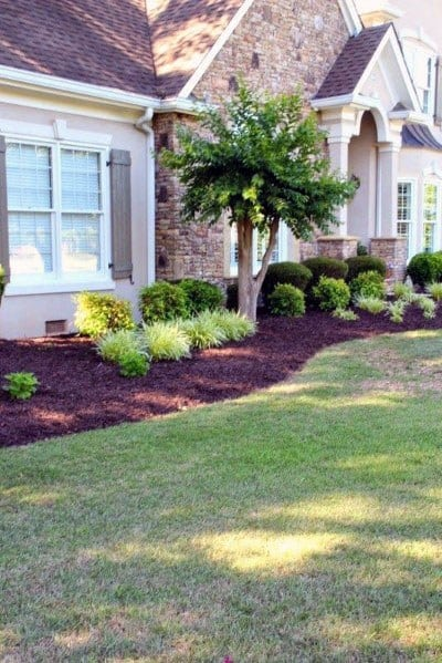 Traditional Good Ideas For Front Yard Landscape