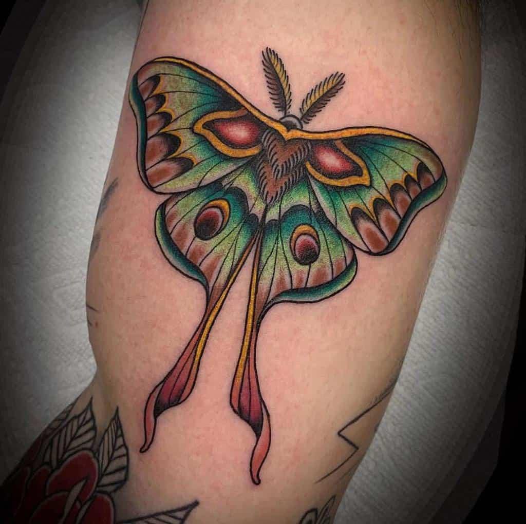 Traditional Luna Moth Tattoo Mr E10