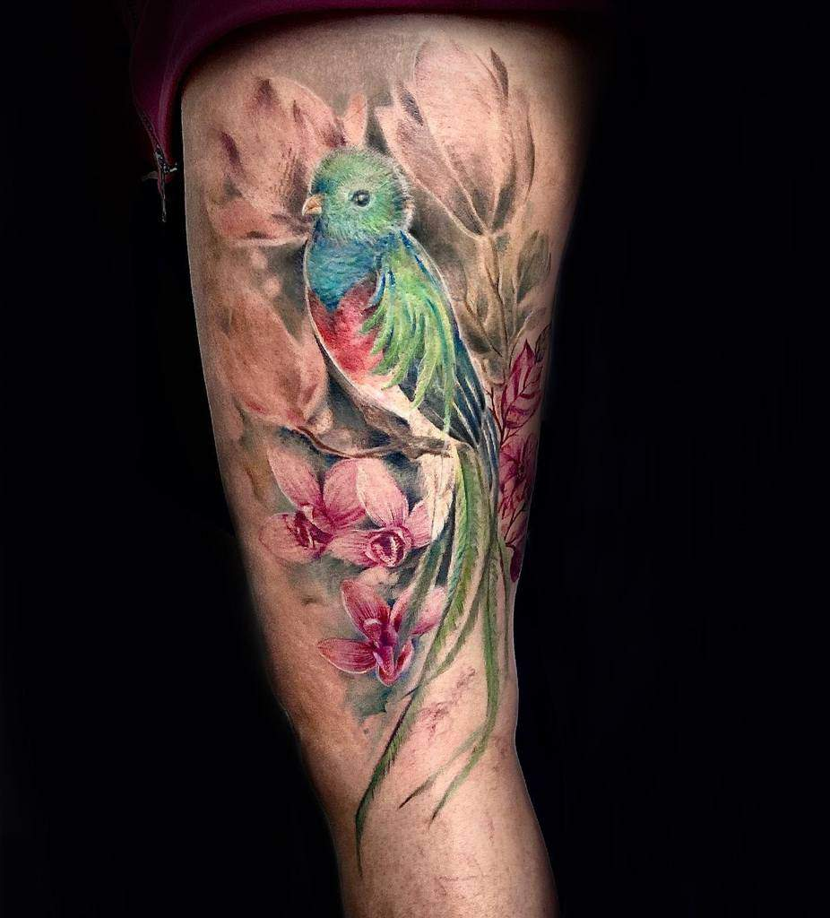 Traditional Quetzal Tattoos Mnink