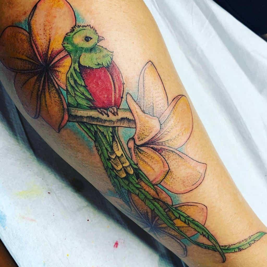 Traditional Quetzal Tattoos Carpidiemdeeznutztattoo