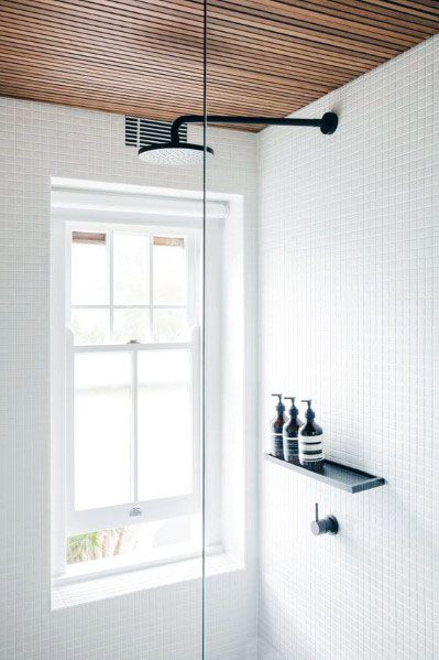 Traditional White Shower Window Ideas