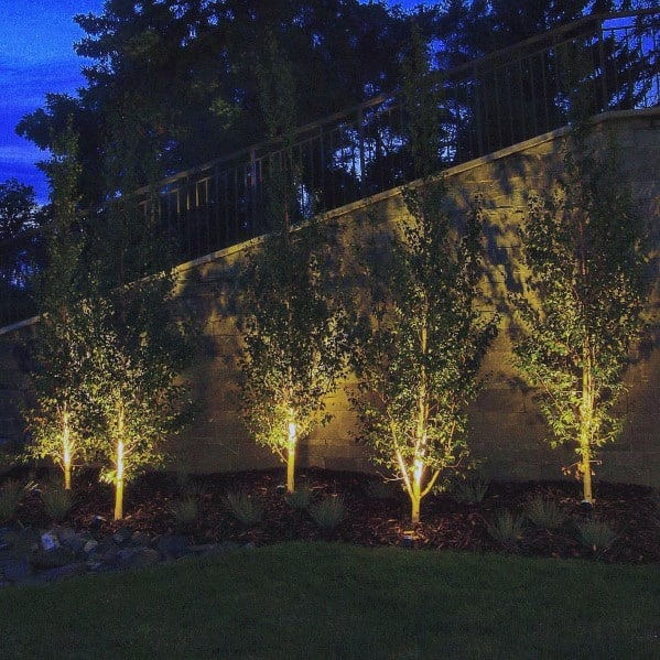 Tree Flood Lamps Landscape Lighting Design Idea Inspiration