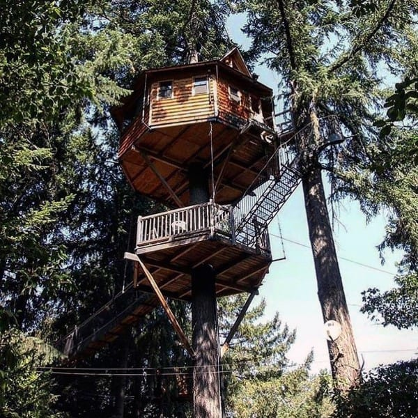 Tree House Design Ideas