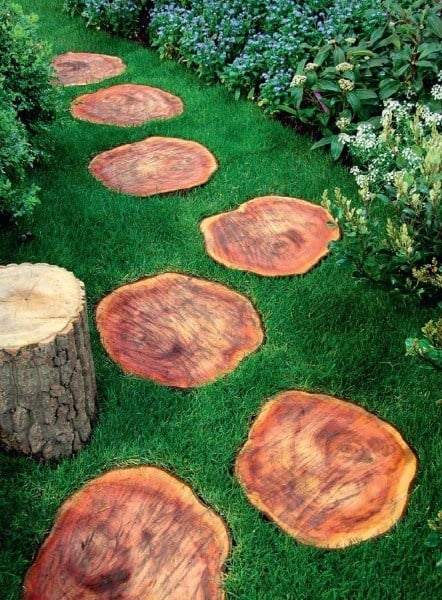 Tree Stump Logs Walkway Ideas