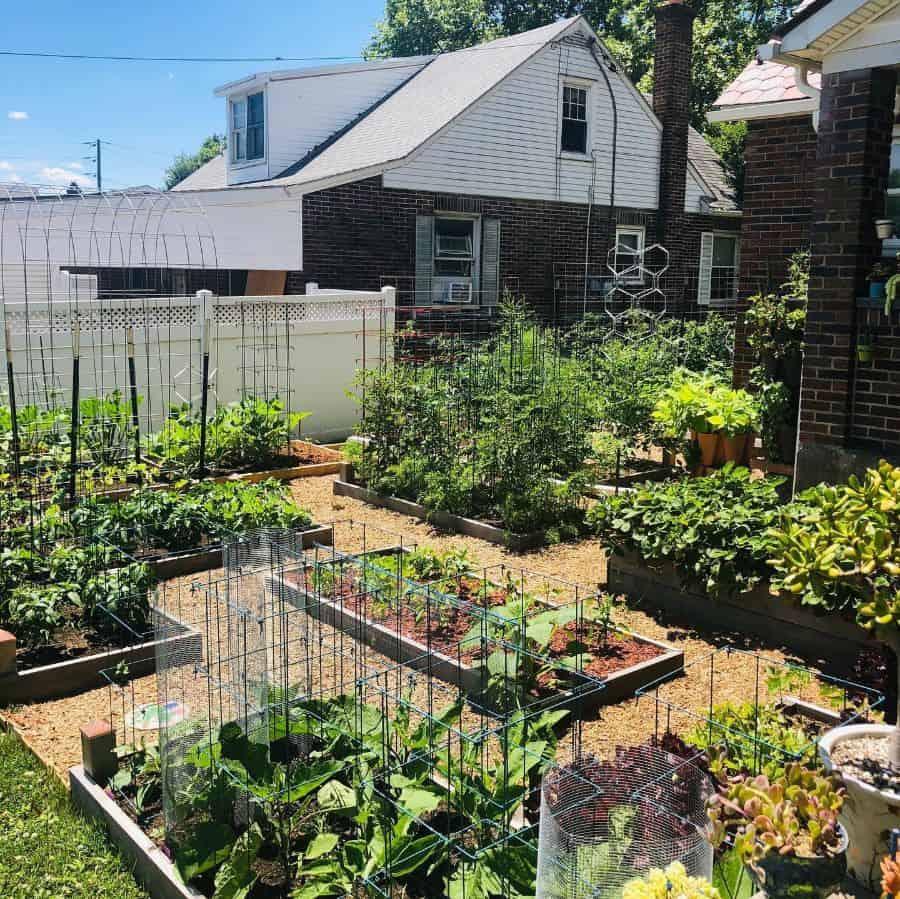 trellis vegetable garden ideas doug_snellen88