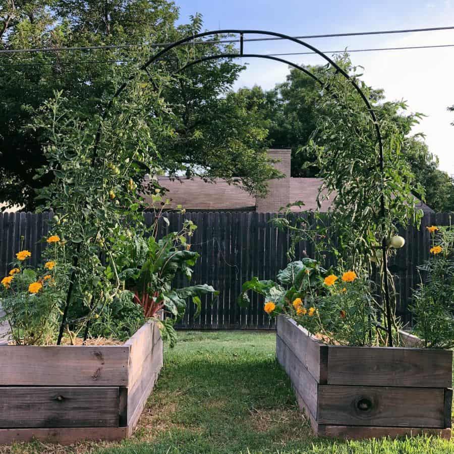 trellis vegetable garden ideas homegrowingwild