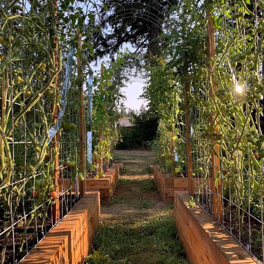 trellis vegetable garden ideas trinitystreetgarden