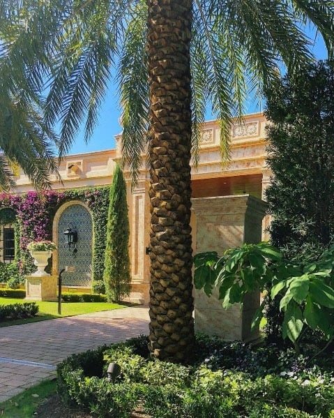 Tropical Plant Ideas For Driveway Landscaping