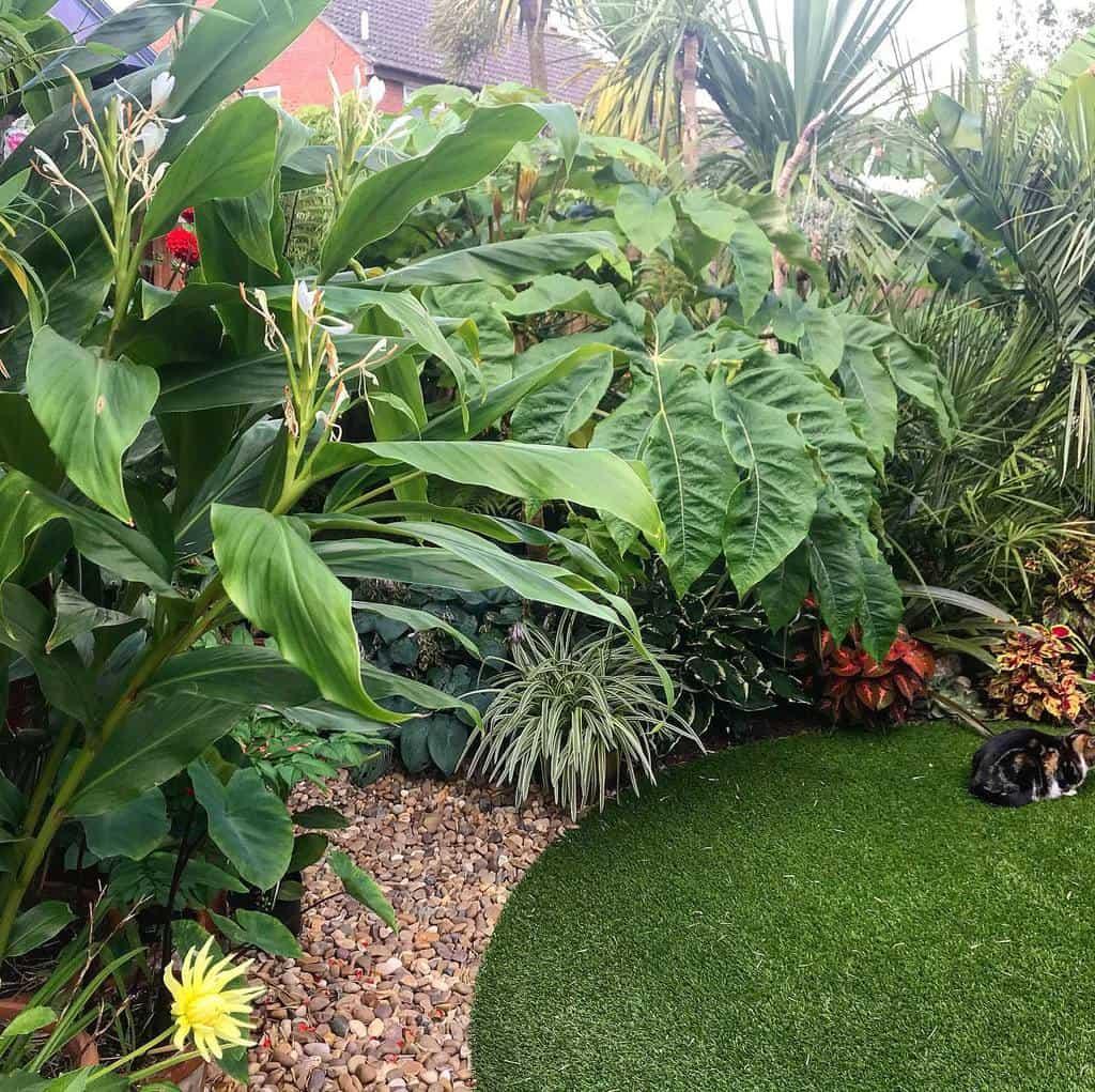 tropical shade garden ideas oxford_home_and_tropicalgarden