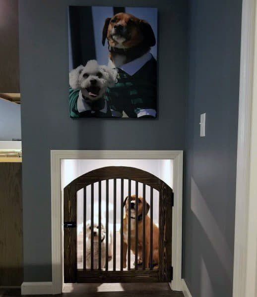 Two Dogs Room Ideas
