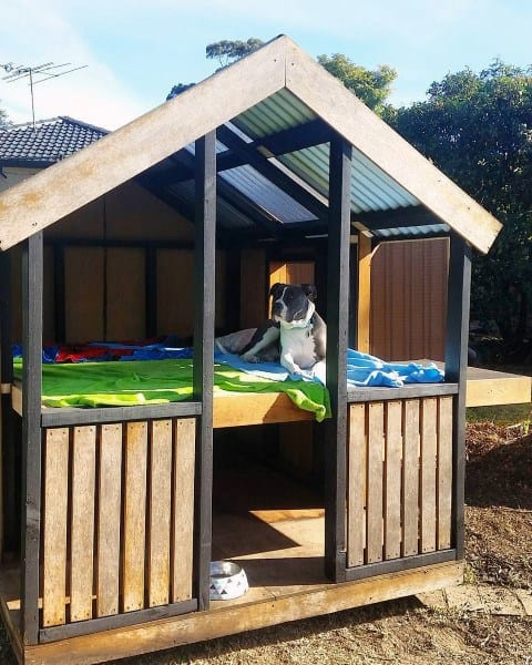 Two Level Cool Dog Houses