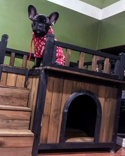 Two Story Wood Dog House Designs Indoor