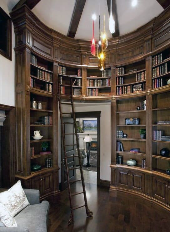 Two Story Wood Ladder Home Library Design Ideas