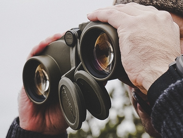 Ultra Clear Steiner Military Marine 10x 50 Binoculars Review