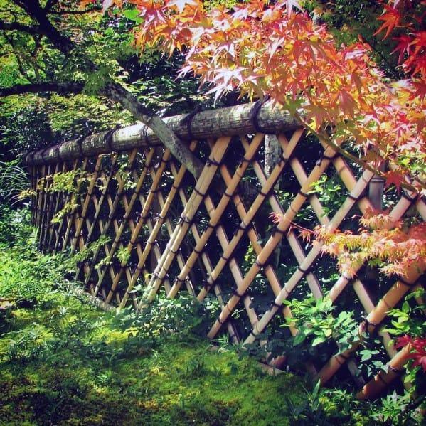 Unique Bamboo Fence Designs