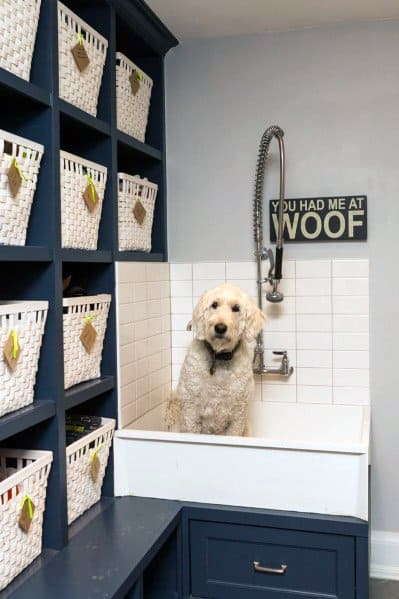Unique Home Dog Wash Stations