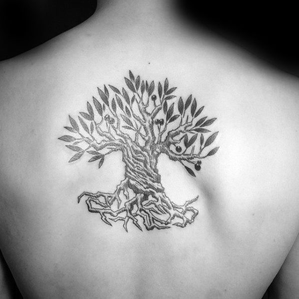 Unique Mens Olive Tree Tattoos On Back