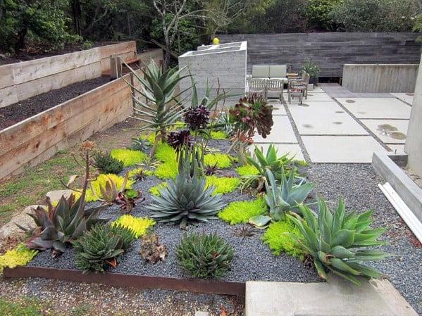 Unique Patio Desert Landscaping Home Ideas