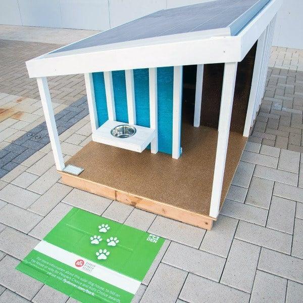 Unique Simple Cool Dog Houses