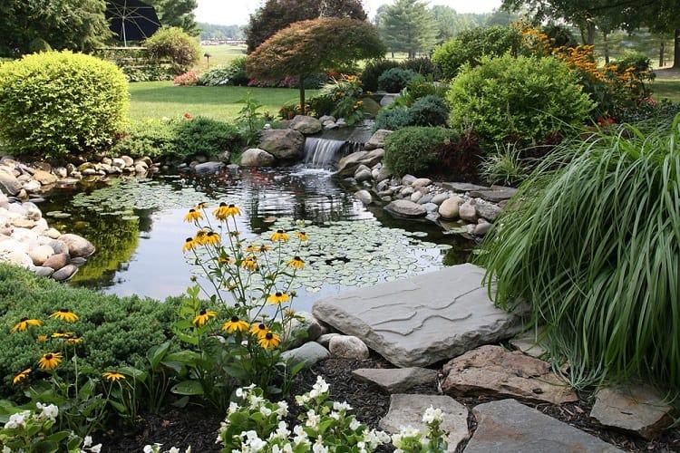 Unique Style Backyard Garden Pond