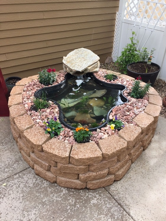 Unique Style Backyard Small Shallow Pond