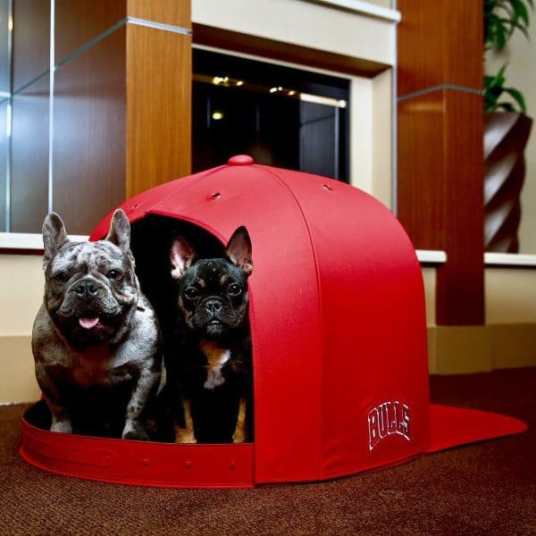 Unqiue Red Snapback Hat Themed Dog House Designs