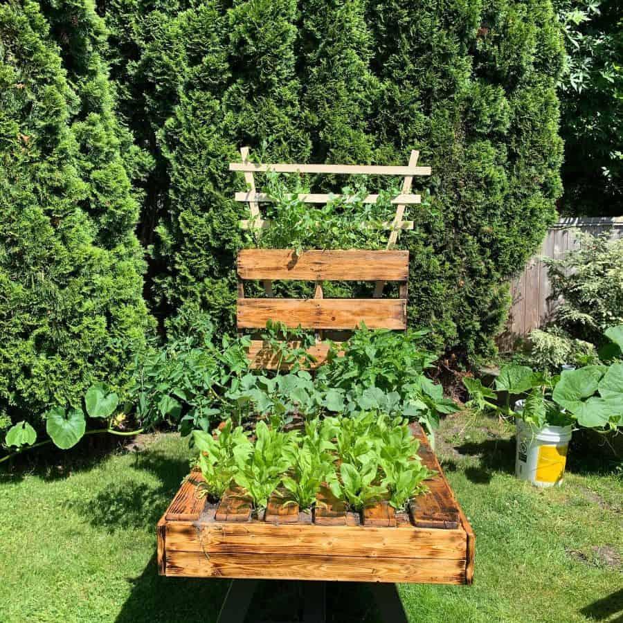 upcycled pallet garden ideas jenamana