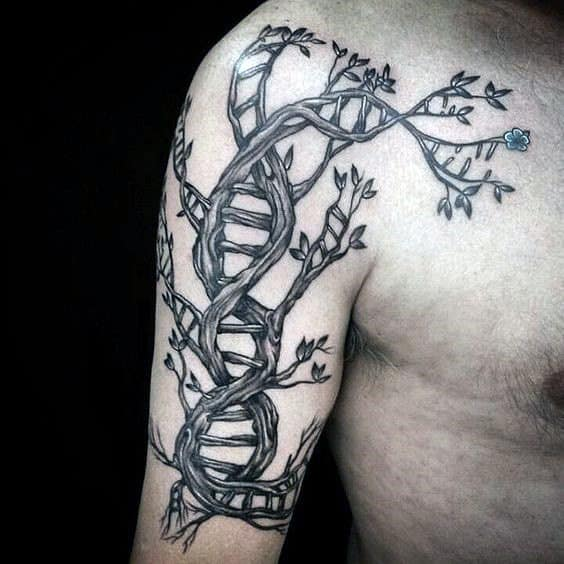 Upper Arm Dna Doule Helix Stand Mens Tattoo Design In Form Of Tree