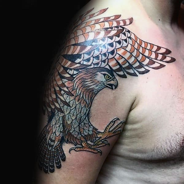 Upper Arm Falcon Tattoo Design Ideas For Gentlemen