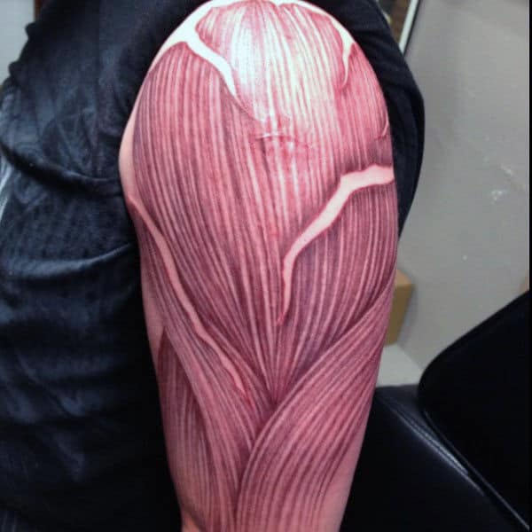 Upper Arm Fibers Of Muscle Male Tattoo Ideas