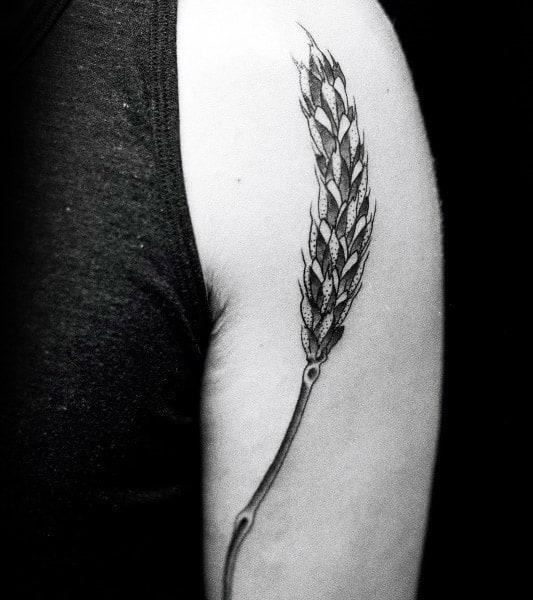 Upper Arm Male Virgo Wheat Tattoos