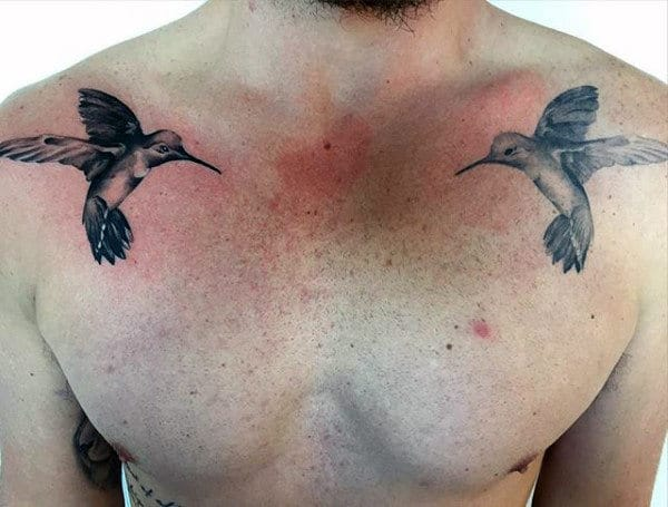 Upper Chest Two Hummingbirds Mens Tattoos