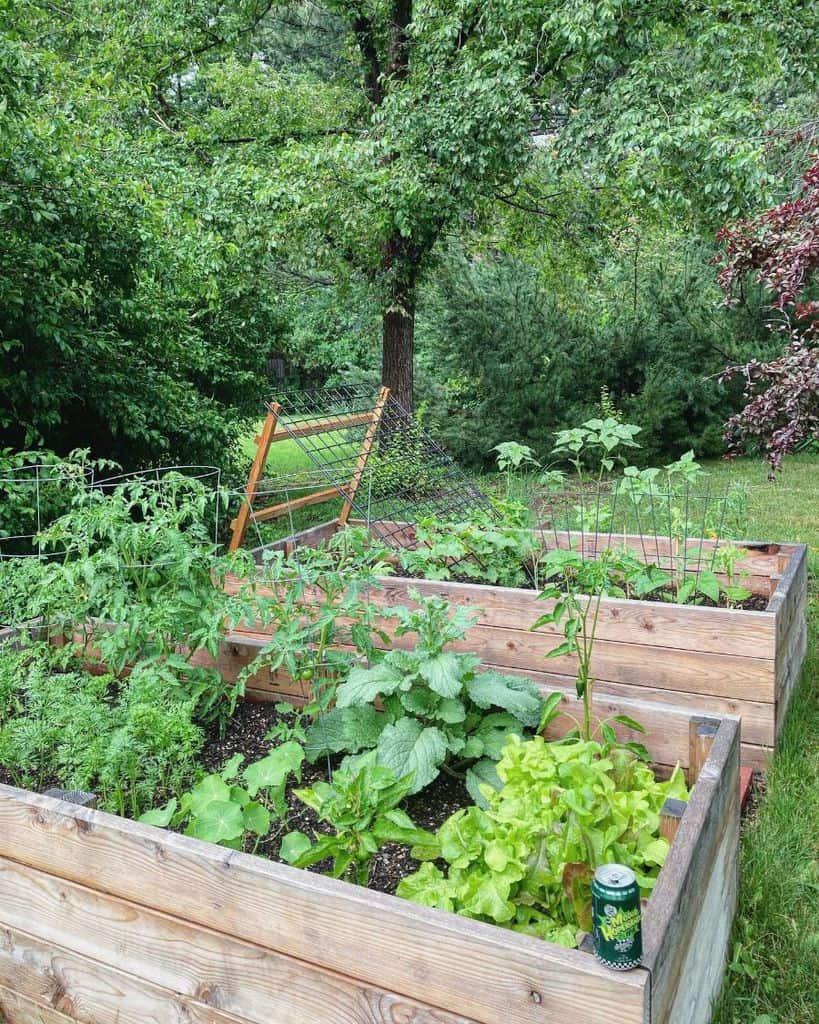 vegetable raised garden bed ideas burn.a.debt