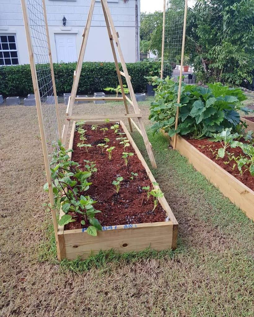 vegetable raised garden bed ideas iamtheantiguangardener