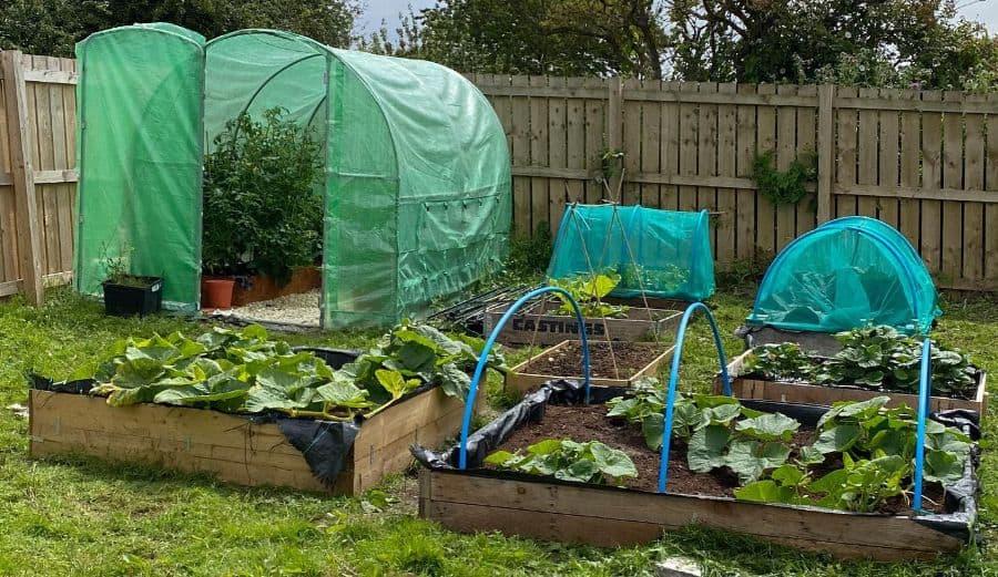 vegetable raised garden bed ideas theplotbythefarm