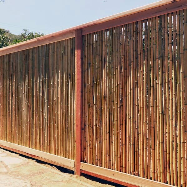 Vertical Backyard Ideas Bamboo Fence