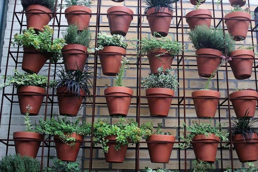 vertical garden container garden ideas 4