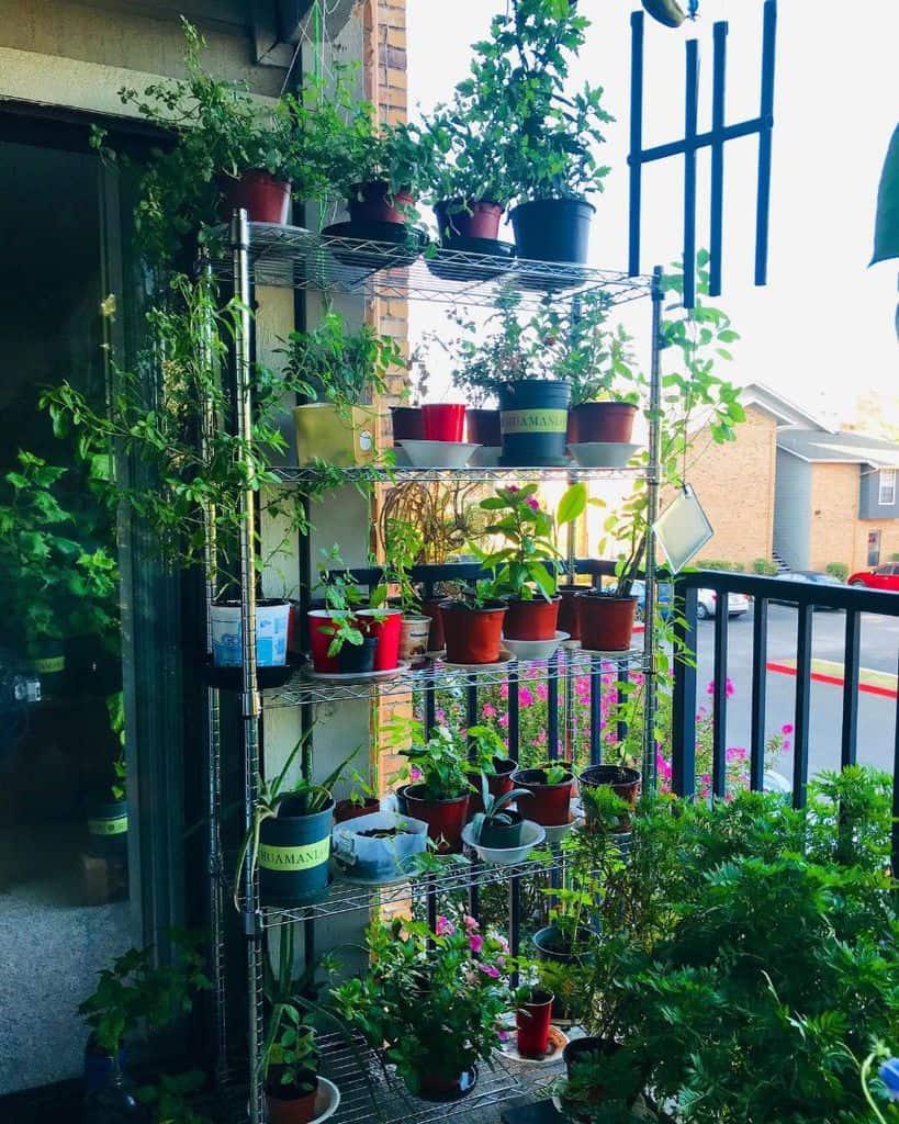 vertical garden container garden ideas sarmisthasunshine