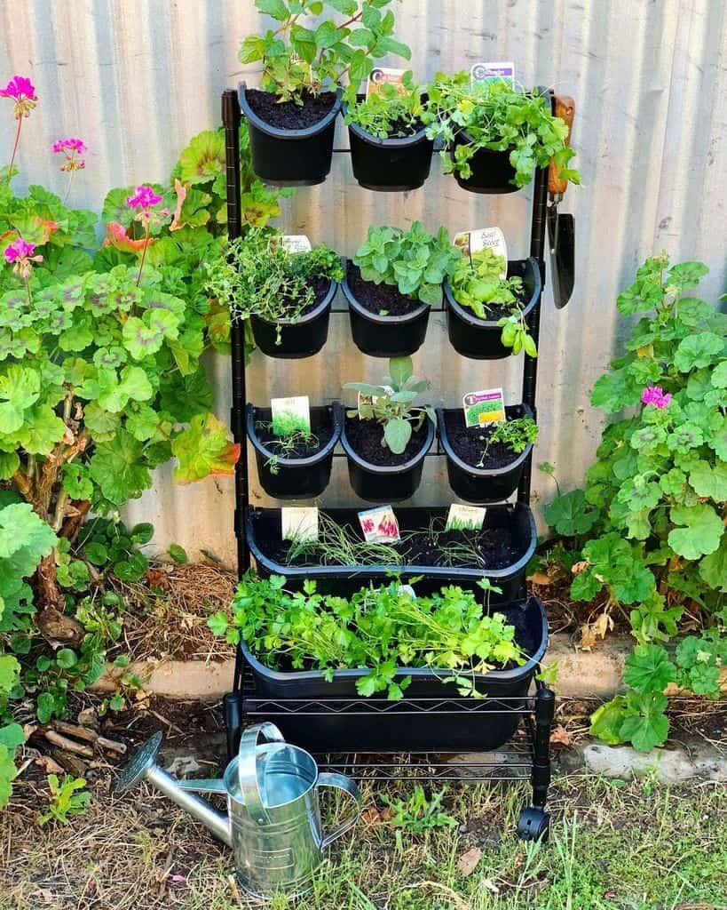 vertical garden herb garden ideas asksarah com au