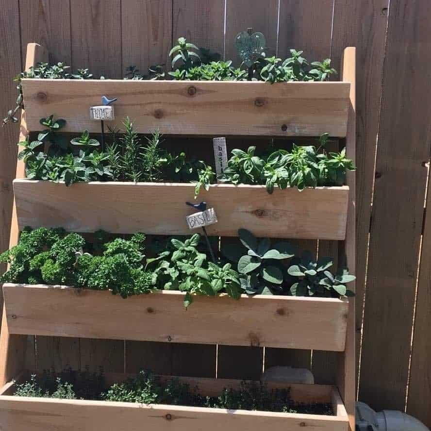 vertical garden herb garden ideas demeyerwoodcrafts