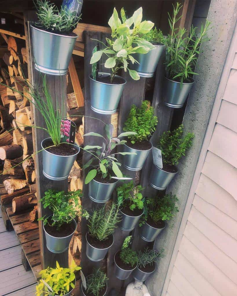 vertical garden herb garden ideas home_at_33